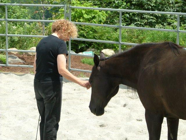 HorseWhispering2